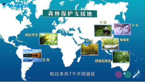 图片说明:大金集团培育空气森林项目